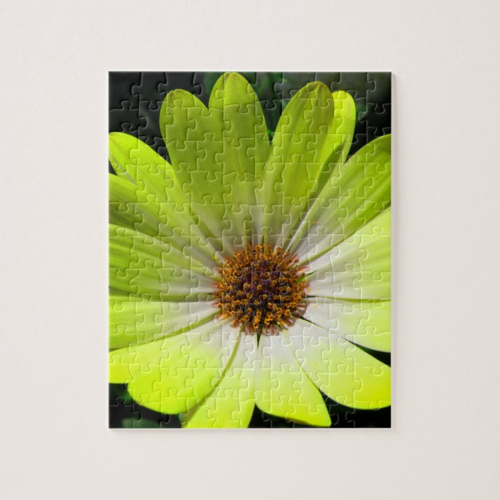 African Daisy Fluorescent Yellow Puzzle