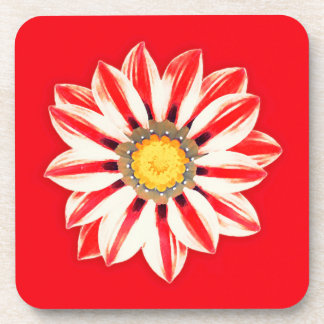 African Daisy / Gazania - Red and White Striped Beverage Coaster