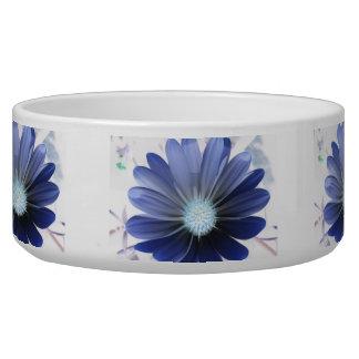 African Daisy Glowing Blue Dog Bowl