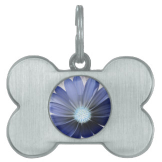 African Daisy Glowing Blue Pet Tag