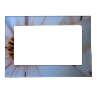 African Daisy I Magnetic Photo Frame