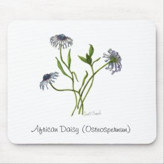 African Daisy Osteospermum Mousepad