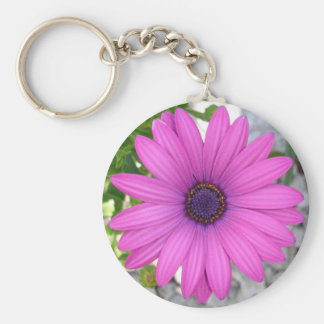 African Daisy (Square) Basic Round Button Keychain