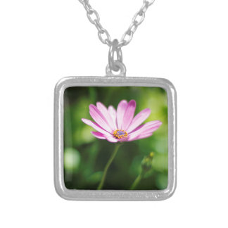 African daisy square pendant necklace