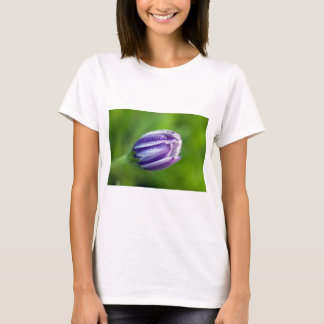 african-daisy T-Shirt