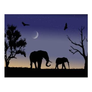 African dawn - elephants postcard