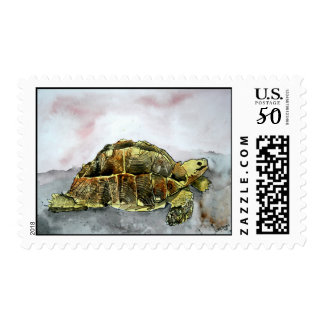 african desert tortoise land turtle postage stamps