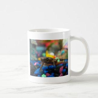 African Dwarf Frog Coffee Mug