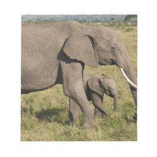 African Elephant and cub (Loxodonta africana), Notepad