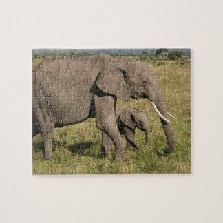 African Elephant and cub (Loxodonta africana), Puzzle