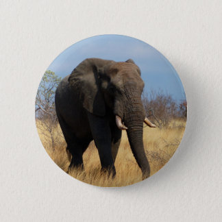African Elephant Button
