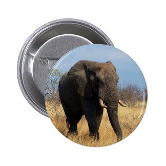 African Elephant Pinback Button
