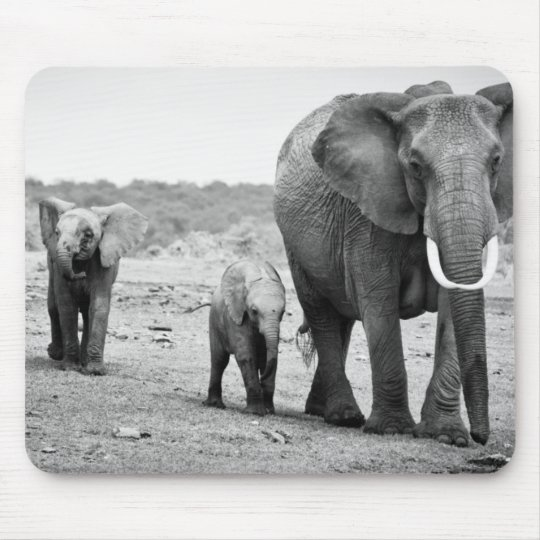 African Elephant & Calves | Kenya, Africa Mouse Pad
