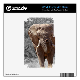 African Elephant Decals For iPod Touch 4G