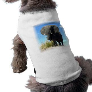 African Elephant Dog Shirt
