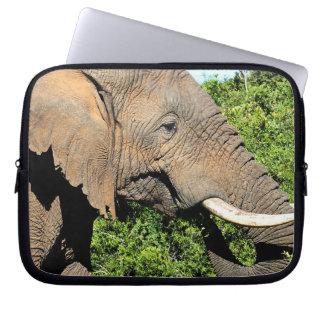 African Elephant eating Computer Sleeve