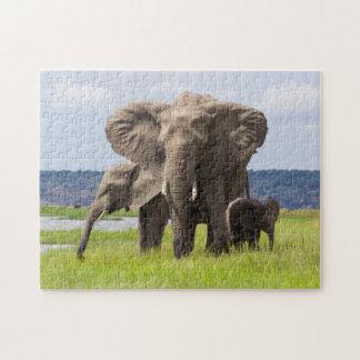 African Elephant Family, Botswana, Photo Puzzle