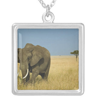 African Elephant grazing in tall summer grass, Square Pendant Necklace
