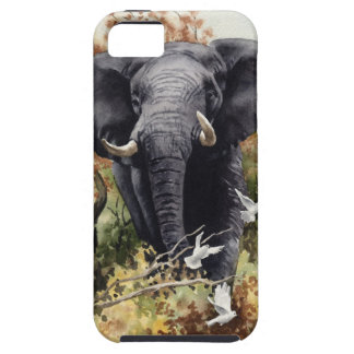 African Elephant iPhone SE/5/5s Case
