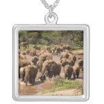 African Elephant, Loxodonta africana, crossing Square Pendant Necklace