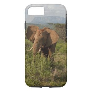 African Elephant, Loxodonta africana, in Samburu iPhone 7 Case