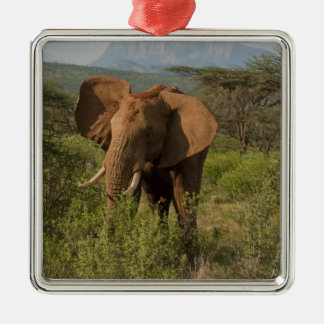 African Elephant, Loxodonta africana, in Samburu Metal Ornament