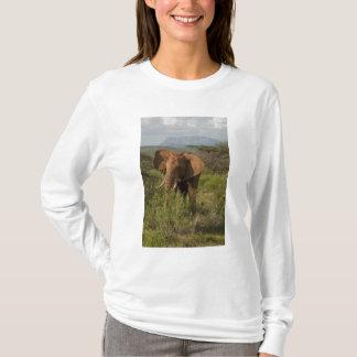 African Elephant, Loxodonta africana, in Samburu T-Shirt