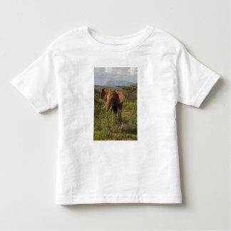 African Elephant, Loxodonta africana, in Samburu Toddler T-shirt
