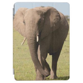African Elephant (Loxodonta Africana), Maasai iPad Air Cover