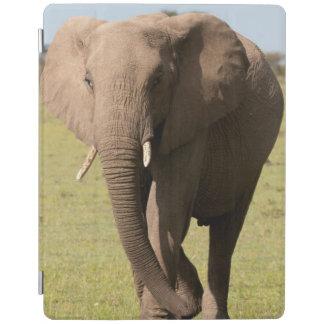 African Elephant (Loxodonta Africana), Maasai iPad Cover