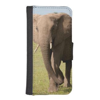 African Elephant (Loxodonta Africana), Maasai iPhone SE/5/5s Wallet Case