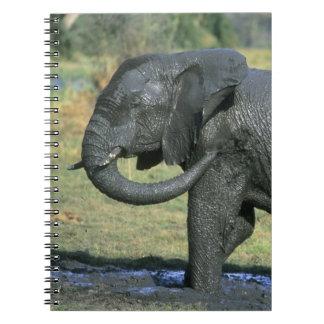 African Elephant, (Loxodonta africana), mud Notebook