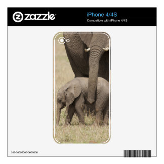 African Elephant mother with baby walking 2 Decals For The iPhone 4