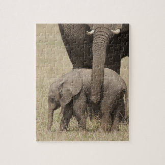 African Elephant mother with baby walking 2 Puzzles