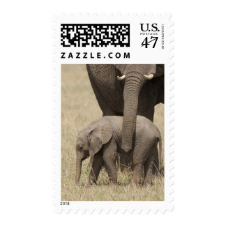 African Elephant mother with baby walking 2 Stamp