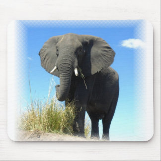 African Elephant Mouse Pad
