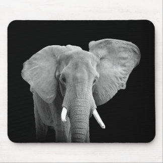 African Elephant - Mousepad