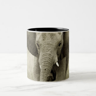 African Elephant mugs & cups