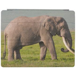African Elephant, Ngorongoro Conservation Area iPad Cover