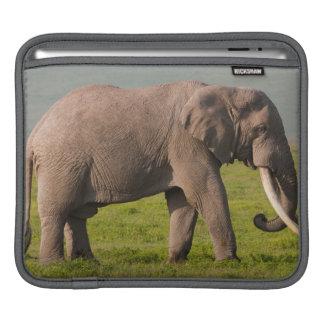 African Elephant, Ngorongoro Conservation Area Sleeve For iPads