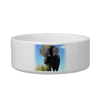 African Elephant Pet Bowl Cat Food Bowls
