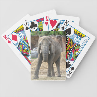 African Elephant Playing Cards
