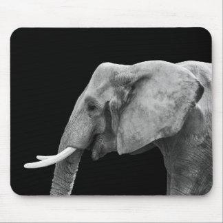 African Elephant Portrait - Mousepad