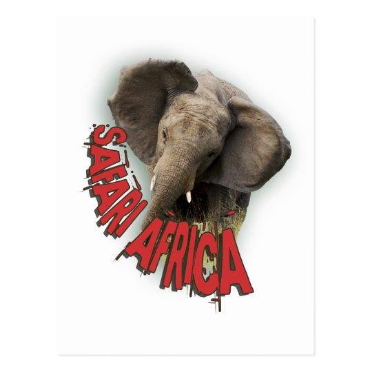African elephant safari africa postcard