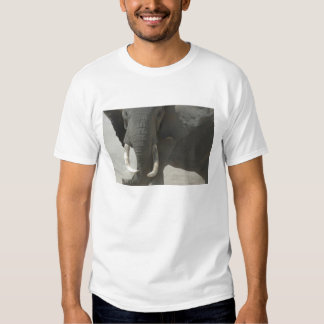 African Elephant Shirt