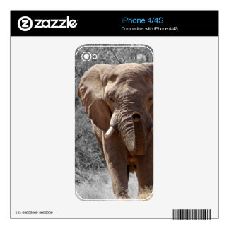 African Elephant Skin For The iPhone 4