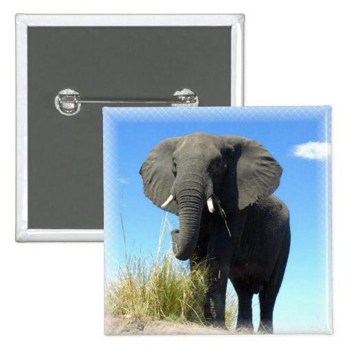 African Elephant Square Pin