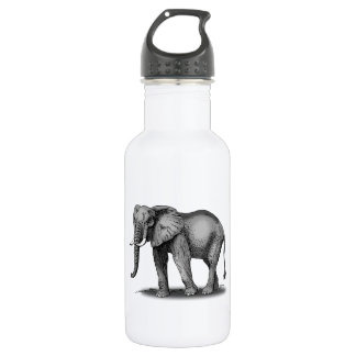 African Elephant Stainless Steel Water Bottle