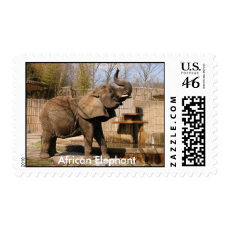 African Elephant Stamp