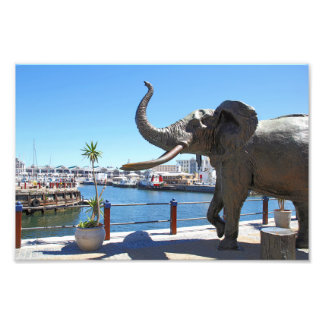 African Elephant statue in Cape Town Photo Art